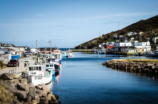 petty-harbour-boats-newfoundland