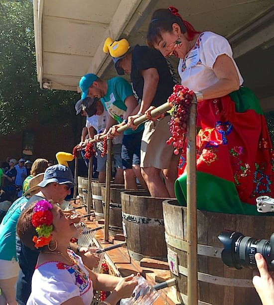 grapestomp-grapefest-grapevine-texas-small