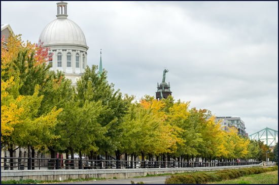 Montreal-old-port
