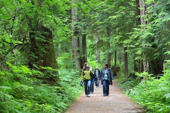 talaysay-talking-trees-tour