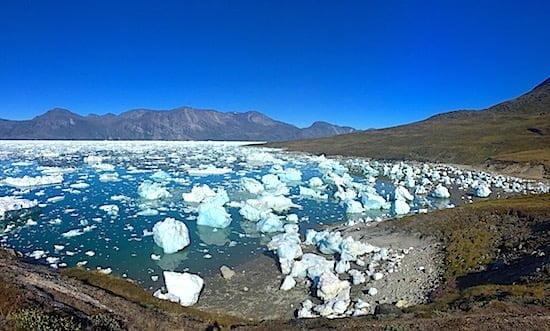 icebergs-greenland-icecap