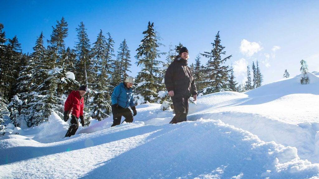WhistlerBlackcomb-snowshoe