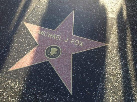 FOX-1024x768