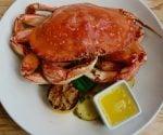 finns-dungeness-crab