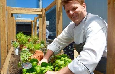 paul-shewchuk-ritz-carlton-toronto-rooftop-garden