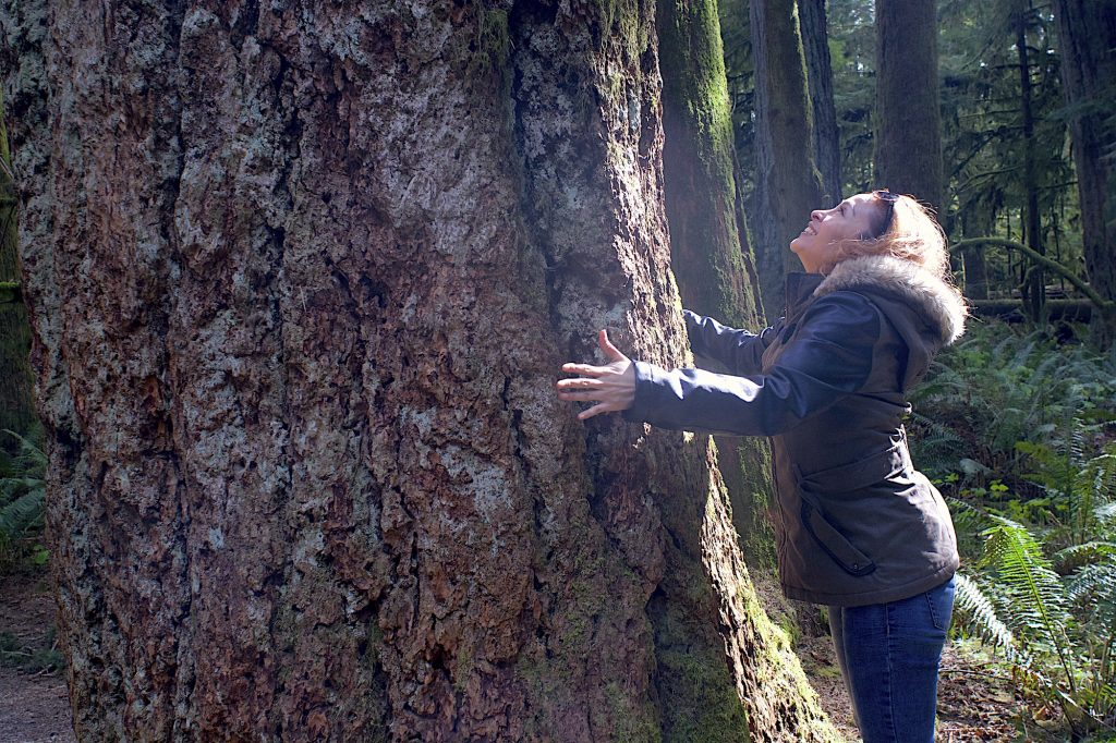 cathedral-grove-vancouver-island-woman-and-tree
