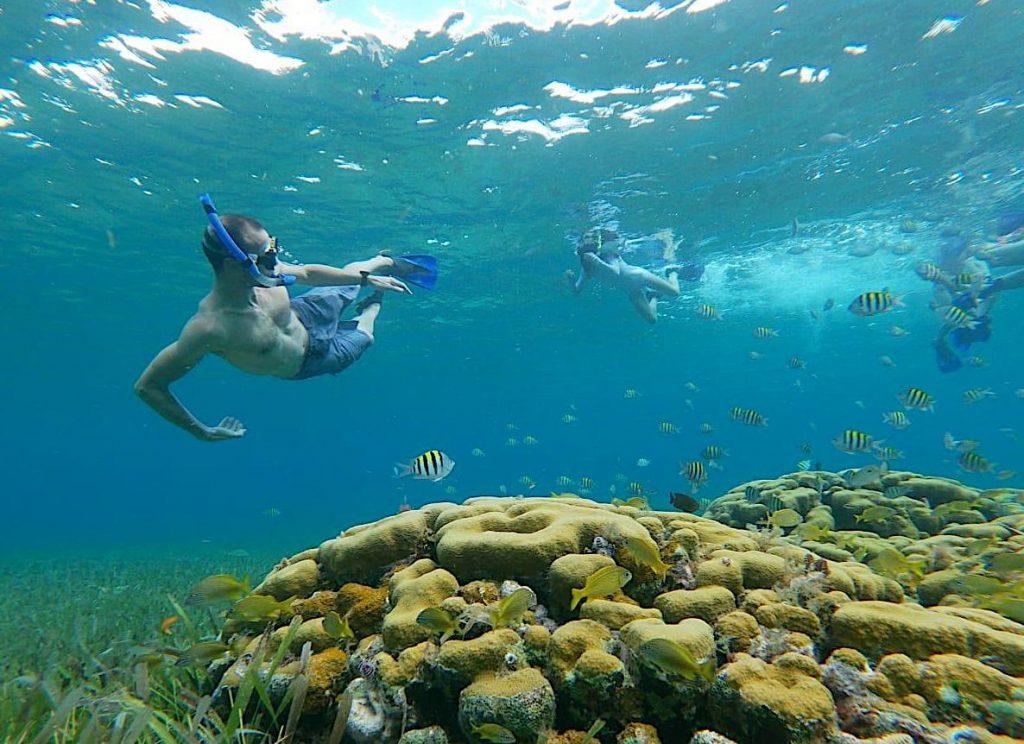 snorkeling-explorean-cozumel-underwater