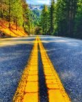 highway-49-california-tahoe-national-forest