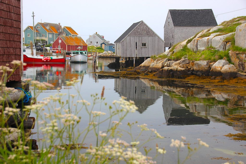 Foggy morning, Peggy's Cove NS
