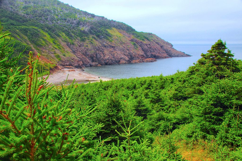 The end of the Fishing Cove trail, Cape Breton National Park