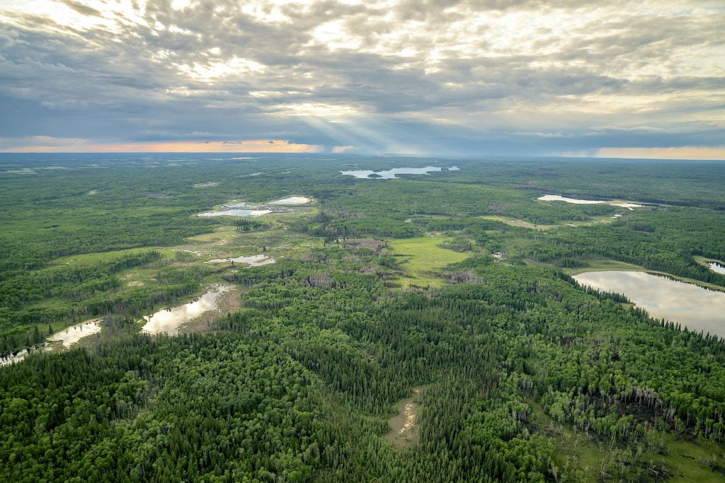 prince-albert-national-park-aerial-view