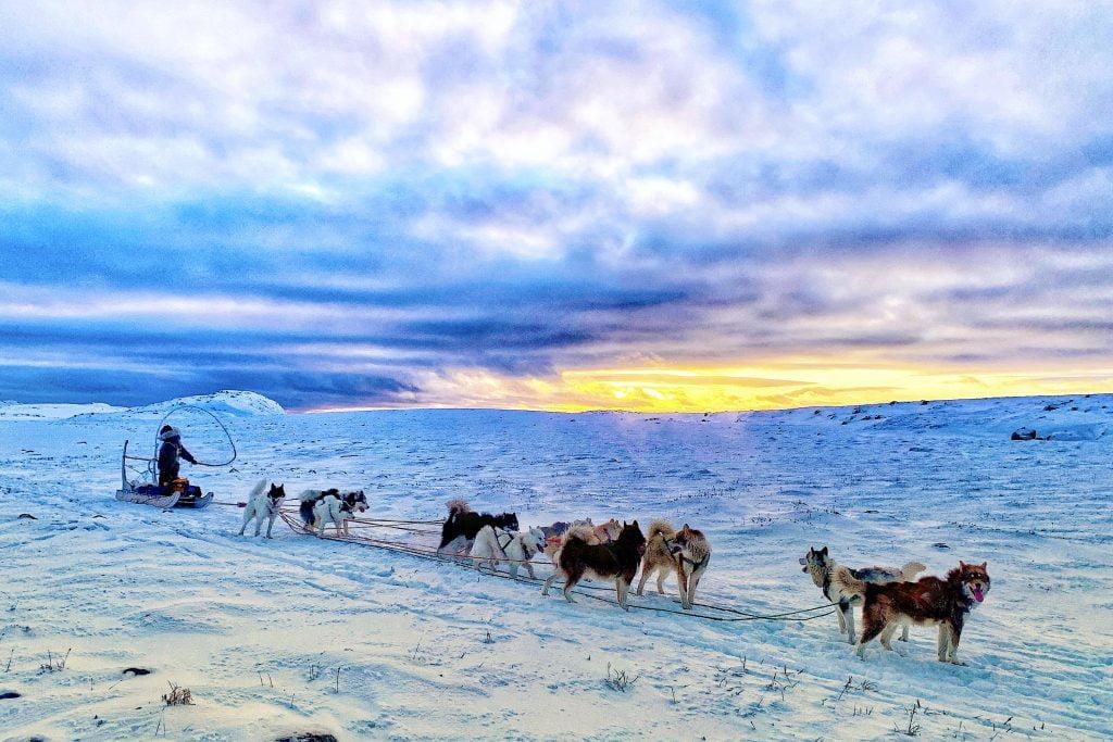 Jovan Simic of Kool Runnings Iqaluit