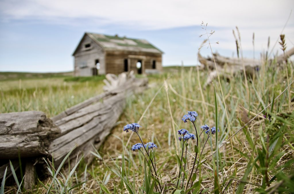 buildings at Herschel Island Government of Yukon